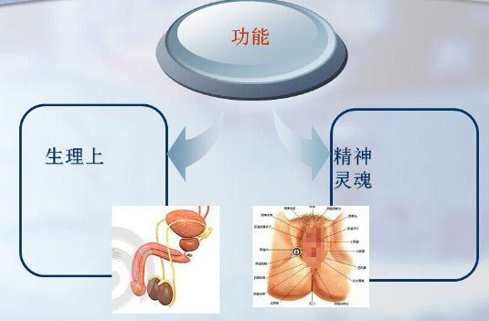 温州男科维生素E可以预防精索静脉曲张吗?