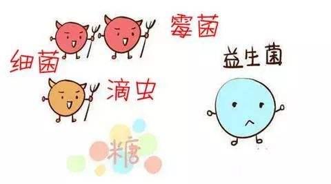 温州妇科霉菌性阴道炎的治疗方法是什么?